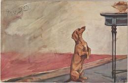 Chien-Teckel - (D.9619) - Cani