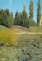 71 - Chalon Sur Saône - Jardin Botanique - Chalon Sur Saone