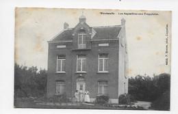 Westmalle - Les Sapinières Aux Trappistes 1908 (met Sterstempel) - Malle