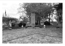 VILLEFRANCHE-SUR-SAONE - Monument Aux Morts, Square Léon-Blum - Villefranche-sur-Saone