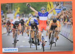 Cyclisme :  Arnaud Démare , Champion De France,  Shimano - Ciclismo