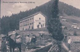 Albergo Monte Laura Sopra Roveredo TI, Transports à Dos D'ânes (4281) 10x15 - TI Ticino