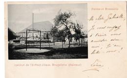 Institut De L'Enfant Jésus, Brugelette (Hainaut) - Ferme Et Brasserie - Brugelette