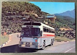 N' Torbus Van Die SA Spoorwee - Buses & Coaches