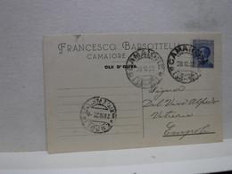 CAMAIORE  -- LUCCA  -- FRANCESCO BARSOTTELLI --OLIO D'LIVA - Lucca
