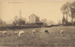 OGY - Vue Du Chemin De Fer (Lessines) - Vue Intérieure De La Gare (station, Bahnhof) - Lessines