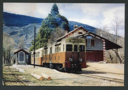 "Carte-photo Moderne ""Tramway Des Chemins De Fer De Provence - Ligne Nice-Digne - Tram Années 50"" - Tram"