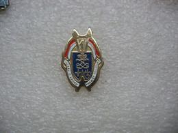 """Pin's De L'insigne Militaire Du 1° Régiment De Dragons,""""Royal D'abord, Premier Toujours"""" - Militares"""