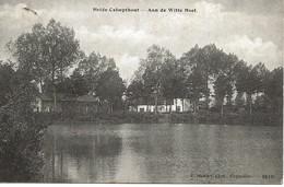 16 Calmpthout Heide Aan De Witte Hoef Hoelen 6510 - Kalmthout
