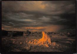 NAMIBIE Rain At Last Termite Mound In Stormy Weather NAMIBIA      N° 19 \MK3005 - Namibia