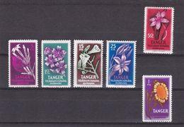 Tanger - Non Classificati