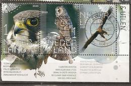 Pays-Bas Netherlands 2020 Oiseaux Birds Raptors Cornerblock Obl - Gebraucht