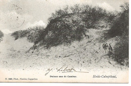 22 Calmpthout Duinen Aan De Cambus Uitgave Hoelen 1668 - Kalmthout
