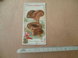 CHROMOS  CHOCOLAT AIGUEBELLE  CHAMPIGNON  MUSHROOM - Aiguebelle