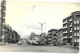 Woluwé-St-Lambert NA19: Avenue Du Roi Chevalier - Woluwe-St-Lambert - St-Lambrechts-Woluwe