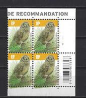 Belgique: 4218 **  Bloc De 4 - Hibou Des Marais - 1985-.. Pájaros (Buzin)