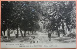 CARTE SAINTE MARIE LA BLANCHE - 21 - ALLEE DES PLATANES - SCAN RECTO/VERSO - 8 - Sonstige Gemeinden