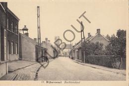 Postkaart-Carte Postale  - RIJKEVORSEL - Bochtenshoot  (B858) - Rijkevorsel