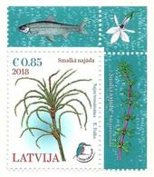2018 - Lettonia - Flora - Vegetables
