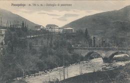 PIEVEPELAGO-MODENA DETTAGLIO DI PANORAMA-CARTOLINA VIAGGIATA IL 12-8-1921 - Modena