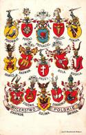 STARYKOŃ SULIMA ŚWINKA / RYCERSTWO POLSKIE - BLASONS Des CHEVALIERS POLONAIS / COATS Of ARMS ~ 1905 (af623) - Polonia