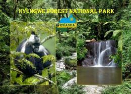 Rwanda Nyungwe National Park New Postcard Ruanda AK - Rwanda