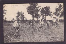 CPA Beauce Agriculture Métier écrite En Beauce N° 458 Faux - Ile-de-France