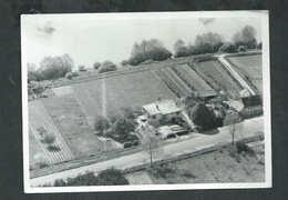 """Photo 12cm X 17cm Du """"Au Vieux Framboisy""""Perlat Et Fils Propriétaires Récoltants à Pouilly Sur Loire (Nievre) - Places"""