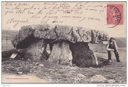 OP24- 81) VAOUR (TARN)  LE DOLMEN  - (ANIMÉE - 2 SCANS - Vaour