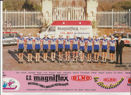 CARTE CYCLISME GROUPE TEAM MAGNIFLEX 1980 ( DECOUPE, FORMAT 21 X 29 - Radsport