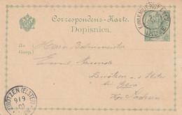 Bosnie Entier Postal Ilidze Pour L'Allemagne 1901 - Bosnien-Herzegowina