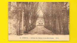 ETREVAL Intérieur Du Château Et Son Allée D'Ormes (Daniel Delboy) Meurthe & Moselle (54) - Autres Communes