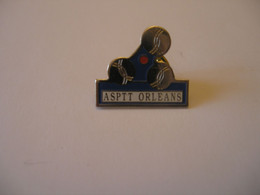 ASPTT ORLEANS PETANQUE - Post