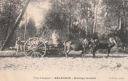*** 33 ***  ARCACHON  Attelage Landais -   Neuve TTB - Arcachon
