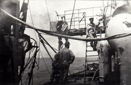 Pola, K.u.K. Kriegsmarine, Repro? - Croatia