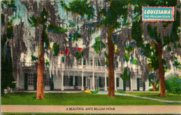 Louisiana A Beautiful Ante Bellum Home - Other