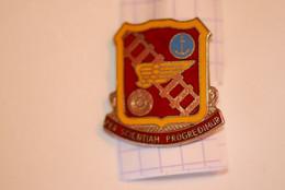 Insigne, Etats Unis ,PER SCIENTIAM PROGREDIMUR , Ira Green Inc G 23,  2 Scans , Frais Fr 1.95 E - Badges & Ribbons