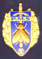 PMS. Préparation Militaire Supérieure. émail Grand Feu. Abeille. D.1061. - Heer