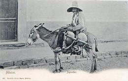 Cpa MEXICO - Aguador - Ane - México
