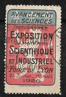 """France  Vignette """" Foire De Lyon """" Exposition Scientifique 24/07 Au 01/08 1924  """"  Oblitéré  B/ TB Soldé  ! ! ! - Tourisme (Vignettes)"""