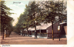 STOCKHOLM SWEDEN~BLANCHS CAFE~1900s AXEL ELIASSONS #622 POSTCARD 49490 - Sweden
