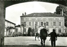 16 REMY MARTIN PROPRIETE DU GROLLET - France