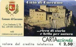 *CARTA AZIENDA 2° Tipo: CITTA' DI CACCAMO - Cat. 505* - NUOVA (MINT) (FT) - Unclassified