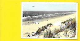 COQ Sur MER De Haan A/Zee Mer Et Dunes (Artcolor) Belgique - De Haan