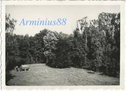 France, 1940 - Sainte-Sabine, Côte-d'Or - Parc Du Château - Luftwaffe - Aufklärungsgruppe 21 - Wehrmacht - Westfeldzug - War, Military