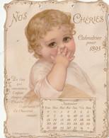 Enfants 12 Grand Decoupis Nos Cheries Calendrier Pour 1895 12.7 X 17 Cm - Children