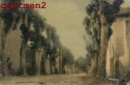 CABANNES AVENUE DE SAINT-ANDIOL EDITION DURAND 13 - Sin Clasificación