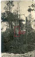 Photo.51(MARNE)Saint Souplet Sur Py. WALDSTELLUNG .Artillerie  Chamapagne .17.Soldats Allemande Guerre 14-18.WWI - Non Classificati