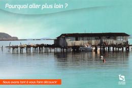 83 LA SEYNE SUR MER  Ferme Aquacole Vue De La Corniche De Tamaris  34 (scan Recto Verso)MF2796BIS - La Seyne-sur-Mer