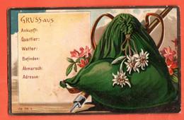 ZBK-40 Litho Souvenir De  Gruss Aus, Sac De Montagne Piolet Et Edelweiss Et Rhododendron. Gaufré,non Circulé - Gruss Aus.../ Gruesse Aus...